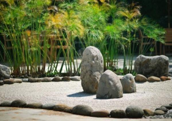 Zen con Papiro